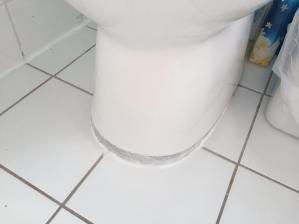 this toilet...